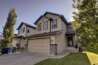 Main Photo: 27 Chapman Close SE in Calgary: Chaparral Detached for sale : MLS®# A1144350