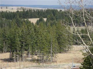 Photo 3: HWY # 1 TO HWY # 68 SOUTH in CALGARY: Rural Bighorn M.D. Rural Land for sale : MLS®# C3615920