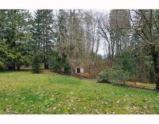 Photo 8: 25035 FERGUSON Avenue in Maple Ridge: Cottonwood MR House for sale : MLS®# V811377
