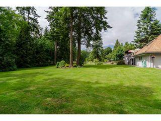 Photo 19: 17142 21 Avenue in Surrey: Pacific Douglas House for sale (South Surrey White Rock)  : MLS®# R2176109