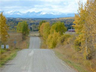 Photo 14: 43141 TWP RD 283 in COCHRANE: Rural Rocky View MD Residential Detached Single Family for sale : MLS®# C3506968