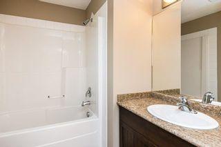 Photo 29: 3814 Allan Drive in Edmonton: Zone 56 Attached Home for sale : MLS®# E4255416
