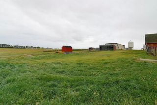 Photo 21: : Rural Mountain View County Agri-Business for sale : MLS®# C4135558