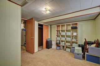 Photo 19: 9816 2 Street SE in Calgary: Acadia Detached for sale : MLS®# A1118342