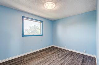 Photo 26: 416 McKerrell Place SE in Calgary: McKenzie Lake Detached for sale : MLS®# A1112888