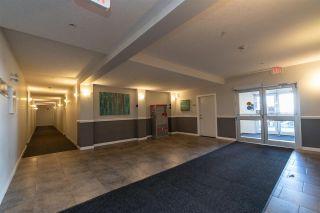 Photo 25: 220 10523 123 Street in Edmonton: Zone 07 Condo for sale : MLS®# E4243821