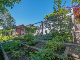 Photo 40: 729 ELAND DRIVE in CAMPBELL RIVER: CR Campbell River Central House for sale (Campbell River)  : MLS®# 766639