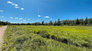 Photo 8: Lot New Albany in New Albany: 400-Annapolis County Vacant Land for sale (Annapolis Valley)  : MLS®# 202120180