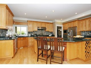 Photo 11: 2125 138A Street in Surrey: Elgin Chantrell House for sale (South Surrey White Rock)  : MLS®# F1320122