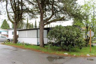 """Photo 3: 21 21163 LOUGHEED Highway in Maple Ridge: Southwest Maple Ridge Manufactured Home for sale in """"VAL MARIA MANUFACTURED HOME PARK"""" : MLS®# R2571230"""