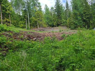 Photo 15: 1395 Taylor Road, in Sorrento: Vacant Land for sale : MLS®# 10229703