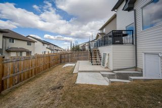 Photo 43: 68 PANAMOUNT Terrace NW in Calgary: Panorama Hills Detached for sale : MLS®# A1093841