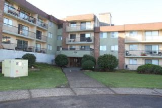 """Photo 1: 319 45598 MCINTOSH Drive in Chilliwack: Chilliwack W Young-Well Condo for sale in """"MCINTOSH MANOR"""" : MLS®# R2559581"""