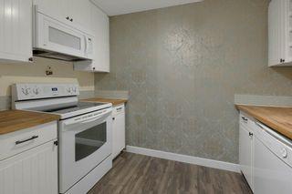 Photo 13: 103 8527 82 Avenue in Edmonton: Zone 17 Condo for sale : MLS®# E4245593