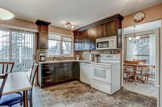Photo 12: 87 Bermuda Close NW in Calgary: Beddington Heights Detached for sale : MLS®# A1073222