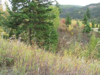 Photo 32: 80 Acres Creighton Valley Road, in Lumby: Vacant Land for sale : MLS®# 10239894