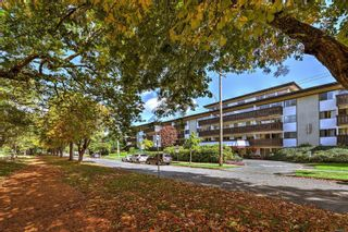 Photo 18: 316 964 Heywood Ave in : Vi Fairfield West Condo for sale (Victoria)  : MLS®# 867328