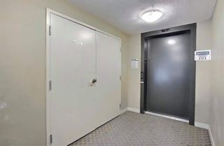 Photo 5: 1214 1317 27 Street SE in Calgary: Albert Park/Radisson Heights Apartment for sale : MLS®# A1142395