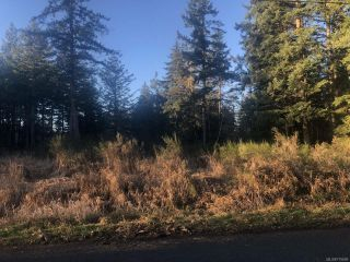 Photo 1: LT A Wilson Rd in COURTENAY: CV Courtenay North Land for sale (Comox Valley)  : MLS®# 775609
