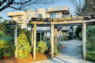 """Photo 18: 202 12206 224 Street in Maple Ridge: East Central Condo for sale in """"COTTONWOOD"""" : MLS®# R2422789"""
