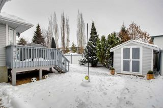 Photo 36: 915 115 Street in Edmonton: Zone 16 House for sale : MLS®# E4226839