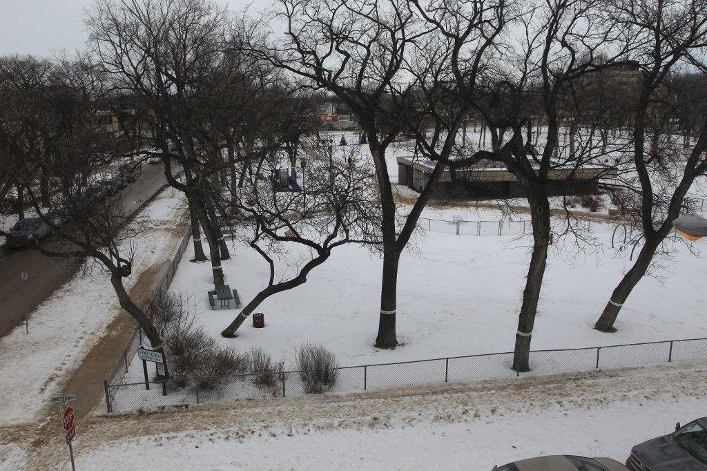 Photo 29: Photos: 31 828 Preston Avenue in WINNIPEG: Wolseley Condo for sale (West Winnipeg)  : MLS®# 1505263