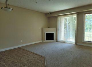 Photo 15: 224 7801 GOLF COURSE Road: Stony Plain Condo for sale : MLS®# E4260645
