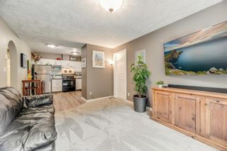 Photo 29: 4005 Santa Rosa Pl in Saanich: SW Strawberry Vale House for sale (Saanich West)  : MLS®# 884709