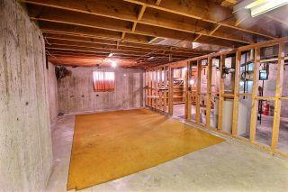 Photo 18: 12129 41 Street in Edmonton: Zone 23 House for sale : MLS®# E4244758