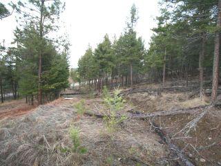 Photo 8: LOT 2 MARTIN PRAIRIE ROAD in : Pritchard Lots/Acreage for sale (Kamloops)  : MLS®# 143543