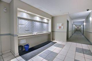 Photo 15: 115 8931 156 Street in Edmonton: Zone 22 Condo for sale : MLS®# E4230069