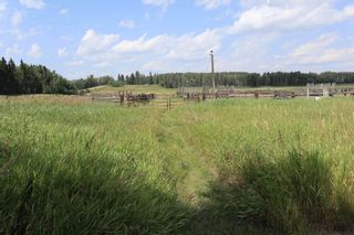 Photo 36: 51055 RR 33: Rural Leduc County House for sale : MLS®# E4256135