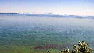 Photo 12: 13048 13 AVENUE in Surrey: Crescent Bch Ocean Pk. Land for sale (South Surrey White Rock)  : MLS®# R2534417