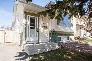Photo 3: 93 ABERDARE Road NE in Calgary: Abbeydale Detached for sale : MLS®# C4240941