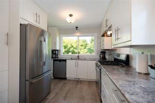 Photo 12: 20489 DALE Drive in Maple Ridge: Southwest Maple Ridge House for sale : MLS®# R2590609