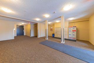 Photo 6: 409 25 Element Drive NW: St. Albert Condo for sale : MLS®# E4246558
