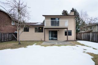 Photo 19: 9865 157 Street in Surrey: Guildford House for sale (North Surrey)  : MLS®# R2348553