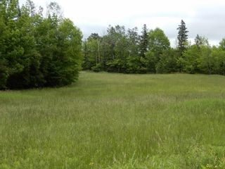 Photo 2: River John Road in Scotch Hill: 108-Rural Pictou County Vacant Land for sale (Northern Region)  : MLS®# 202115411
