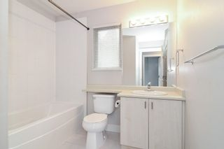 """Photo 18: 31 20326 68 Avenue in Langley: Willoughby Heights Townhouse for sale in """"SUNPOINTE"""" : MLS®# R2624755"""