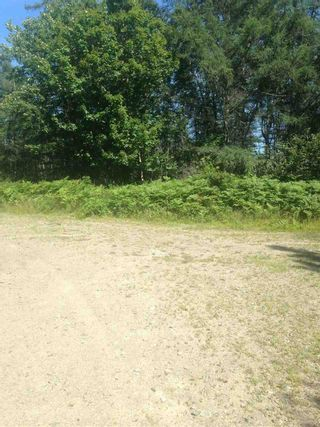 Photo 1: No 1 Highway in Beaver River: 401-Digby County Vacant Land for sale (Annapolis Valley)  : MLS®# 202015372