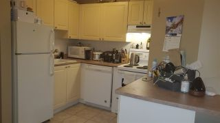 Photo 8: 210 2025 STEPHENS Street in Vancouver: Kitsilano Condo for sale (Vancouver West)  : MLS®# R2521833