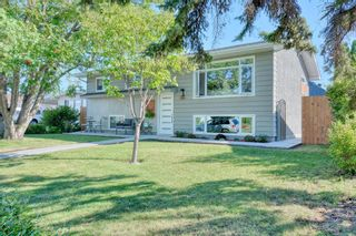 Photo 1: 719 ALLDEN Place SE in Calgary: Acadia Detached for sale : MLS®# A1031397