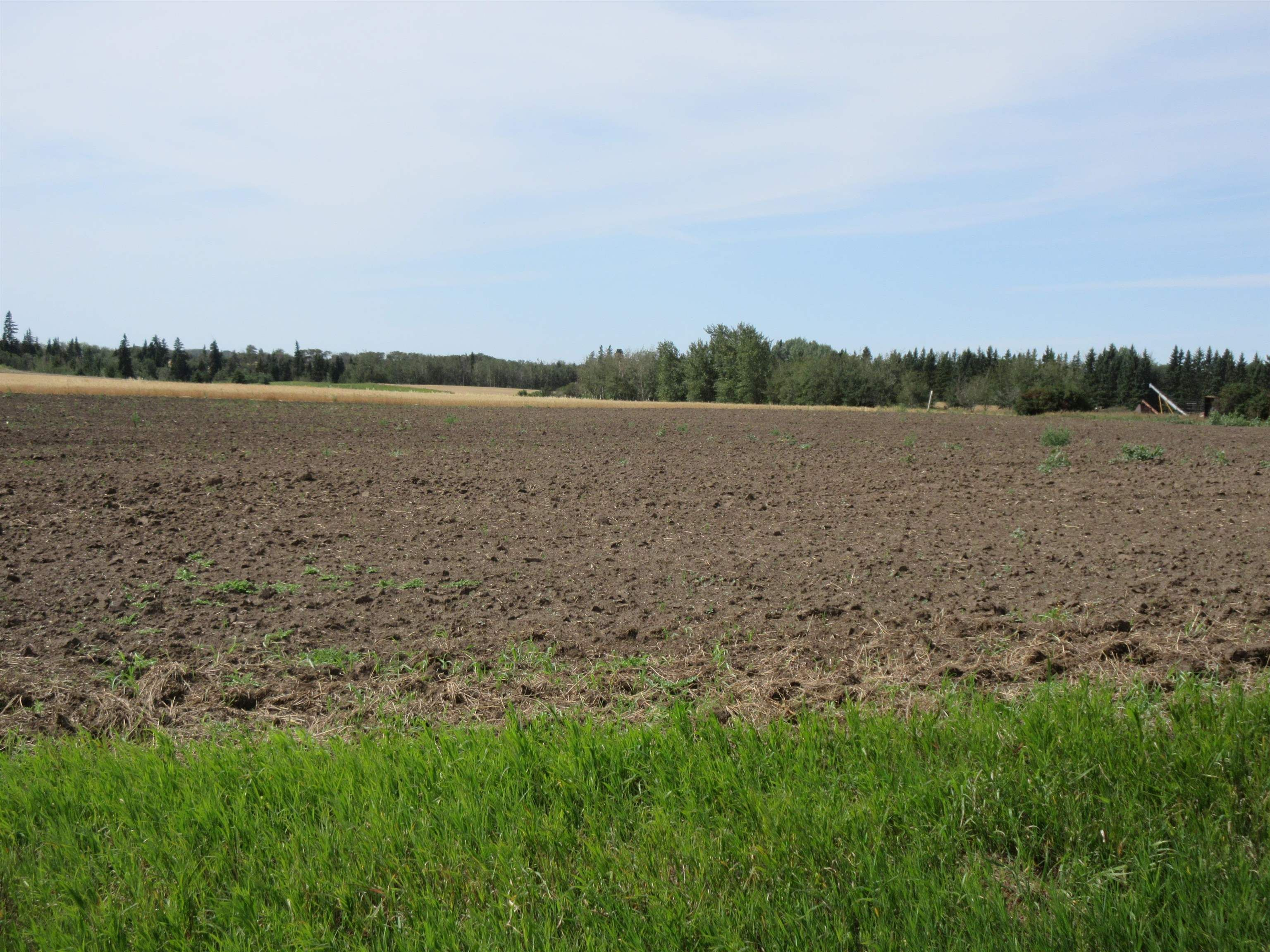 Main Photo: 55516 RR 241: Rural Sturgeon County Rural Land/Vacant Lot for sale : MLS®# E4259412
