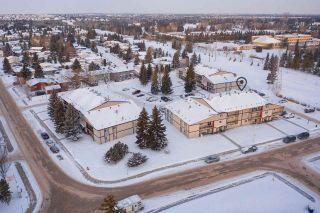 Main Photo: 3B 2812 116 Street in Edmonton: Zone 16 Condo for sale : MLS®# E4227707