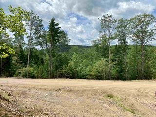 Photo 1: Lot 2 Highway 14 in Windsor: 403-Hants County Vacant Land for sale (Annapolis Valley)  : MLS®# 202104608