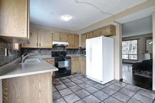 Photo 10: 23 Applecrest Court SE in Calgary: Applewood Park Detached for sale : MLS®# A1079523