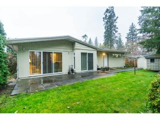 Photo 18: 4998 203A Street in Langley: Langley City House for sale : MLS®# R2419595