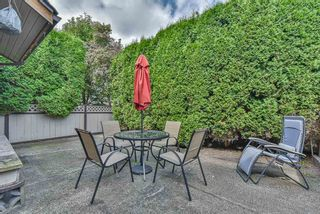 "Photo 31: A 33871 MARSHALL Road in Abbotsford: Central Abbotsford Townhouse for sale in ""Marshall Heights"" : MLS®# R2494267"