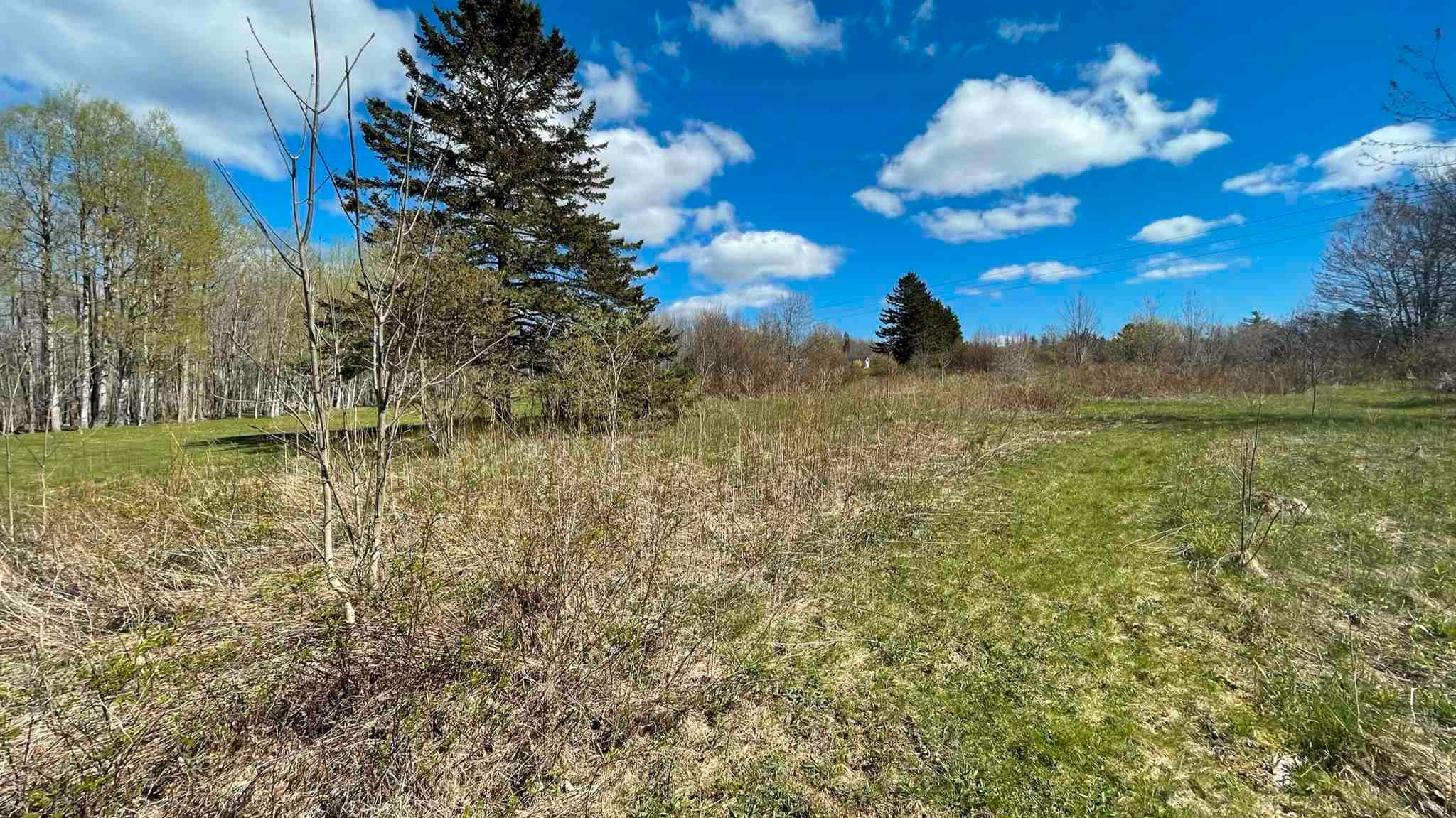 Main Photo: Lot Crisp Road in South Williamston: 400-Annapolis County Vacant Land for sale (Annapolis Valley)  : MLS®# 202115469