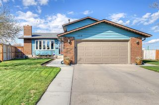 Photo 1: 420 Templeby Place NE in Calgary: Temple Detached for sale : MLS®# A1107183